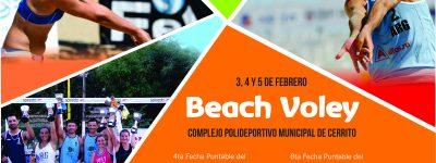 afiche beach 2017