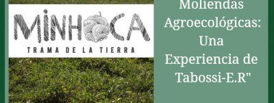 agroecologia 2