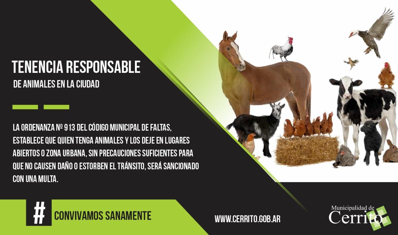Tenencia responsable de animales