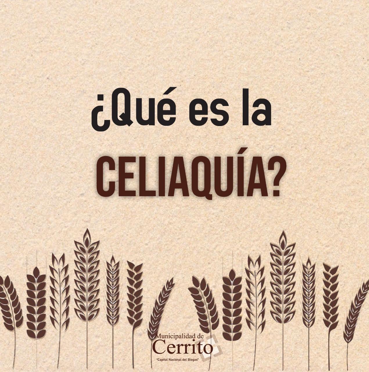 Hablemos de Celiaquía